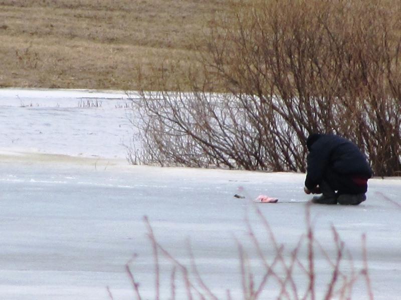 рыболовная инспекция московской области
