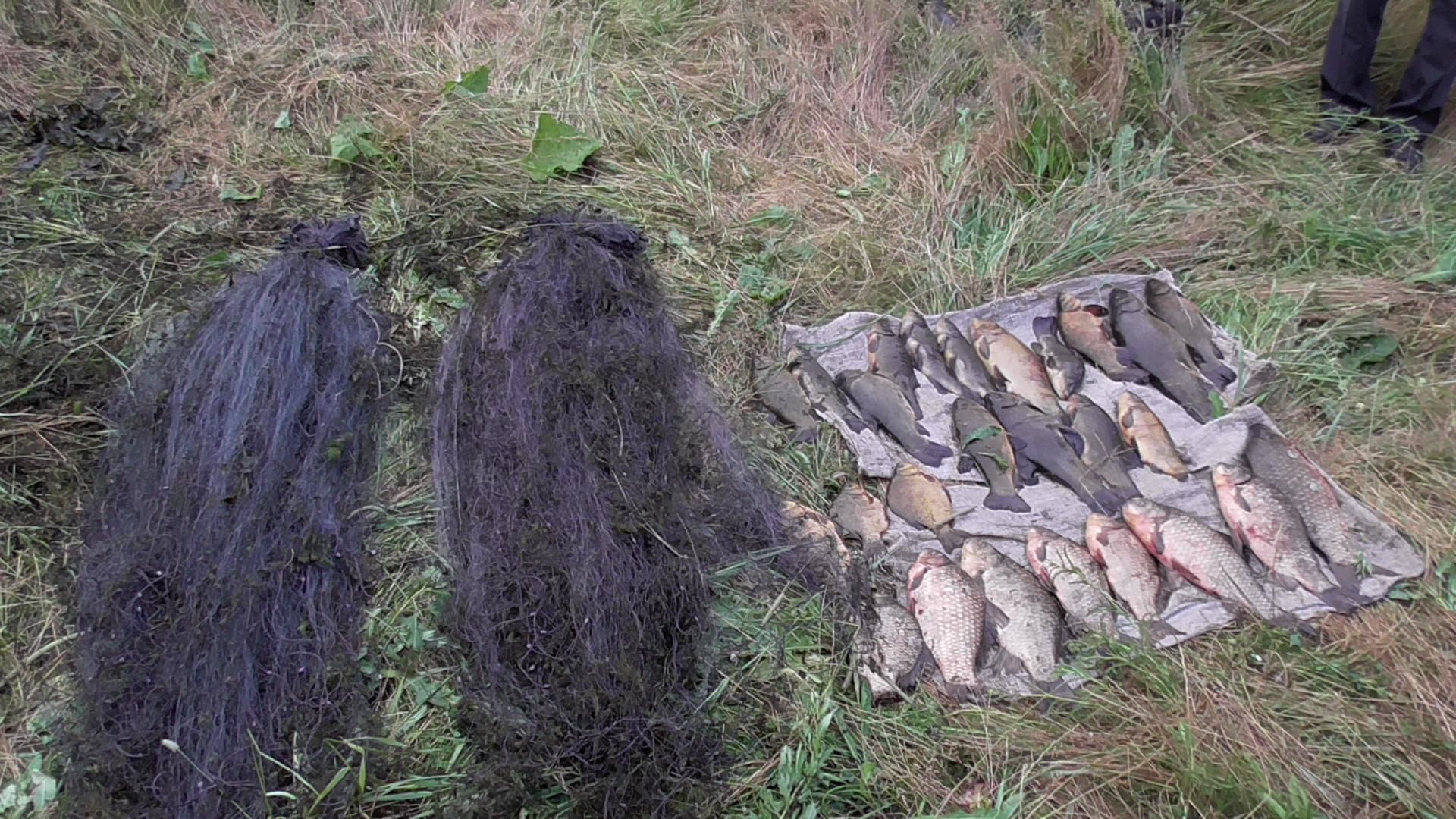 В Шарковщинском районе задержали браконьера, который незаконно наловил рыбы на 2400 рублей, фото-2